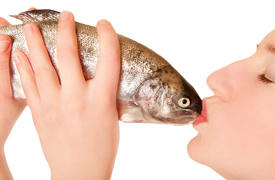 kussen met een vis